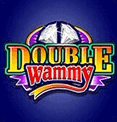 Double Wammy Microgaming