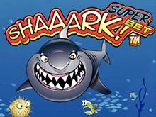 Игровой автомат А-а-акула! – Суперставка: большие ставки – легкие деньги
